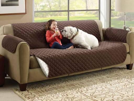 12 loại vải bọc ghế sofa tốt nhất để giữ cho chiếc ghế dài của bạn trông( và có mùi) như mới