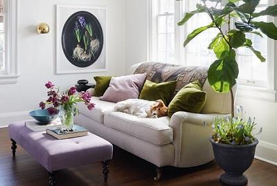 7 Kiểu sofa trang trọng và không bao giờ lỗi thời