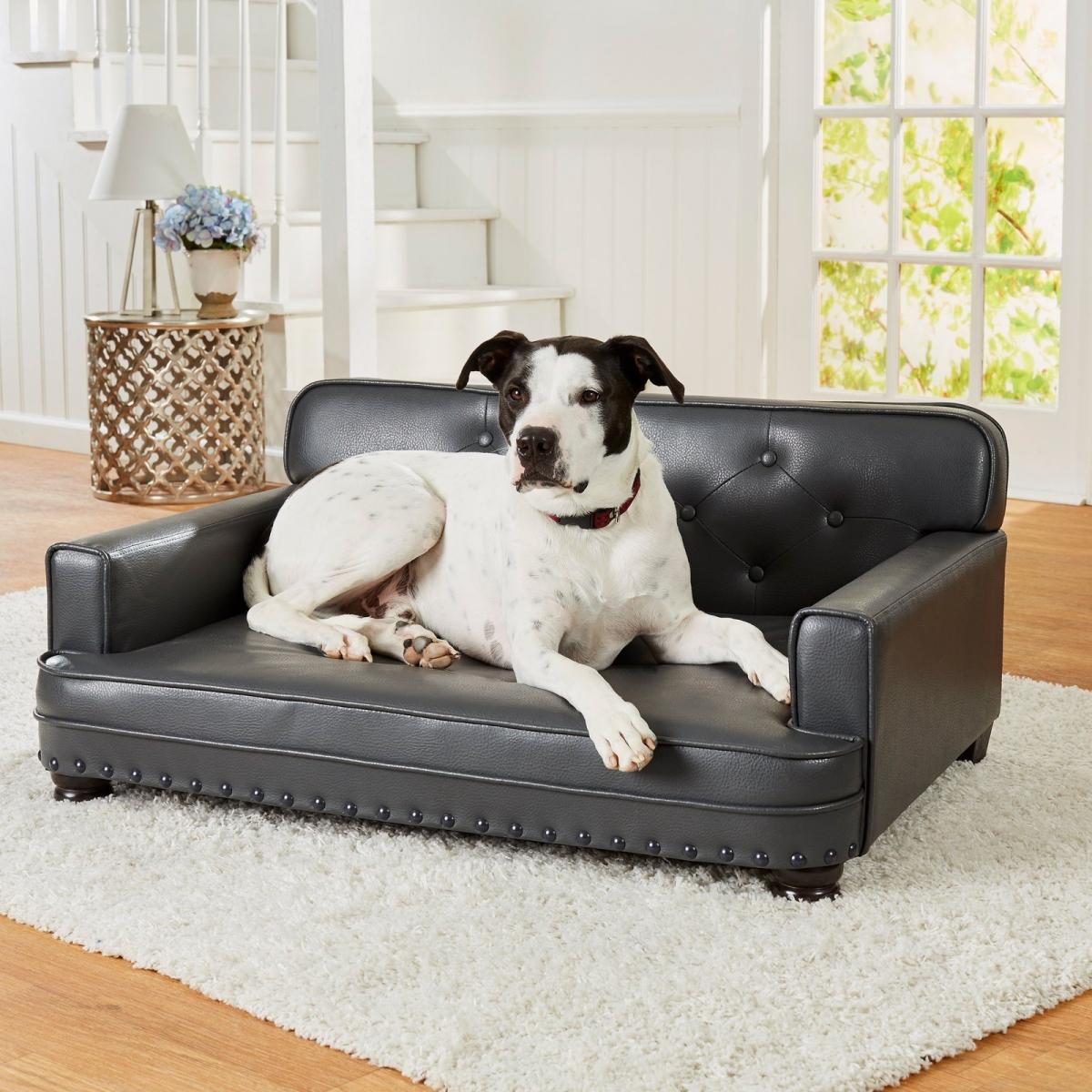 Chọn sofa cho gia đình có nuôi thú cưng chó mèo
