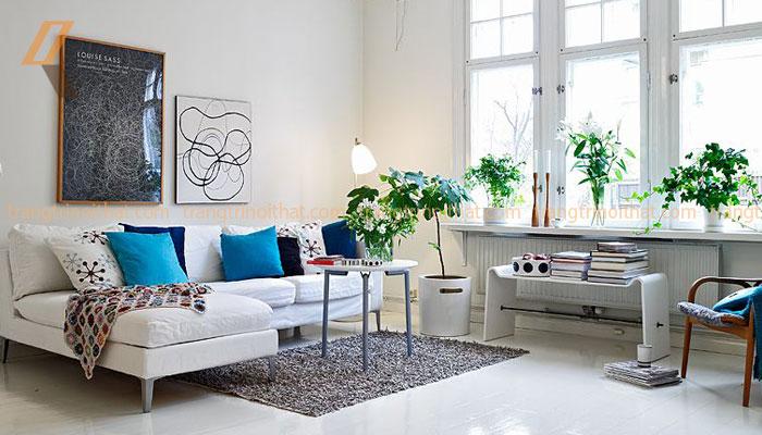 Những bí mật khi lựa chọn mua sofa