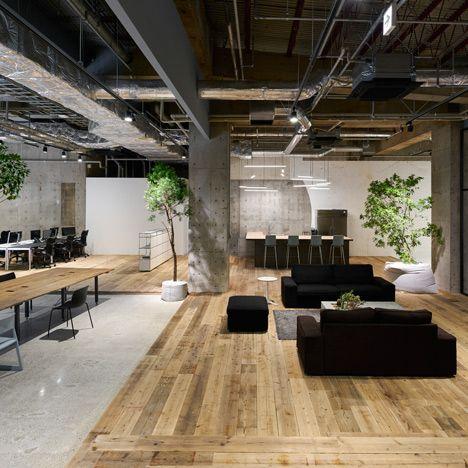 Thiết kế văn phòng với sofa theo phong cách Eco thân thiện